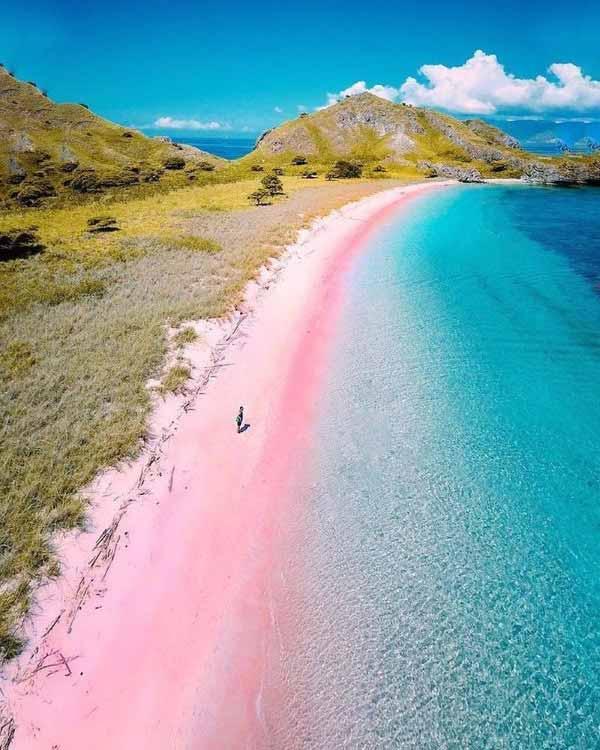 pink beach labuan bajo