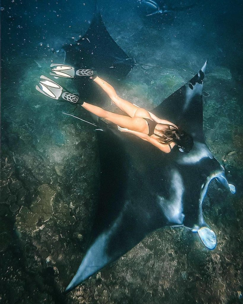 snorkeling with manta at nusa penida