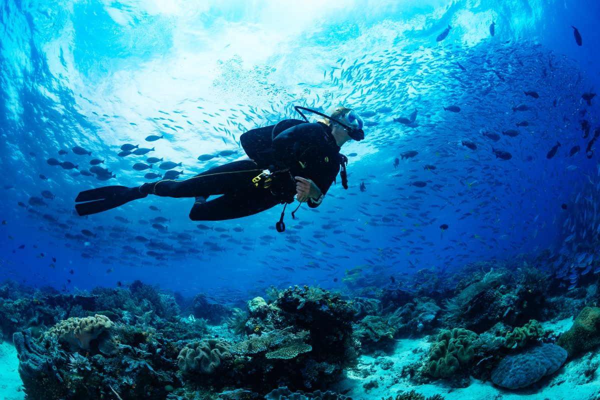 scuba diving nusa lembongan